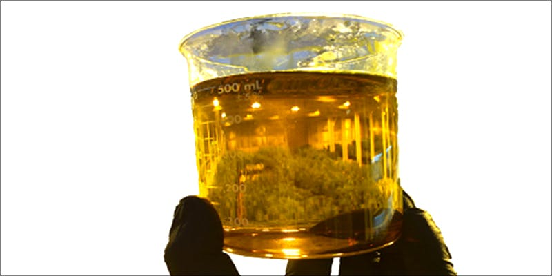 Watch Out Dabbers 2 Watch Out Dabbers, Potent Cannabis Distillates Are No Joke