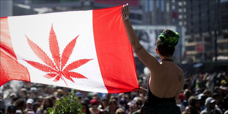 Canadian Recreational Weed hero Believe It Or Not, Cannabis Prohibition Just Celebrated Its 80th Birthday