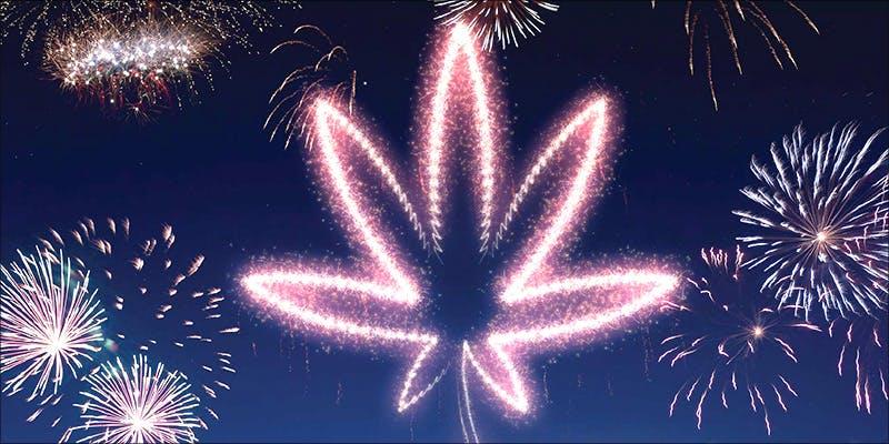 Dr Dinas Dos 7 Major New Study Says Cannabis Reduces Risk Of Stroke