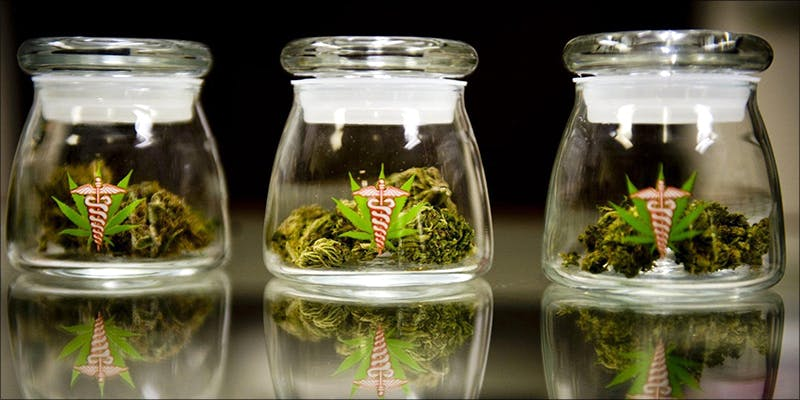 The Complete Weed 2 Believe It Or Not, Cannabis Prohibition Just Celebrated Its 80th Birthday
