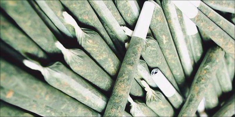 10 Essentials For 10 Major New Study Says Cannabis Reduces Risk Of Stroke