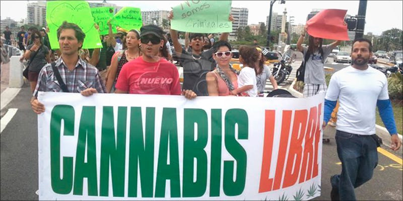 20 Puerto Rico 1 This Cannabis Advocate Says Legalized Weed Would Protect Young People