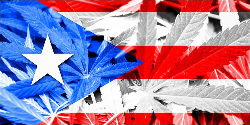 20 Puerto Rico 4 This Cannabis Advocate Says Legalized Weed Would Protect Young People