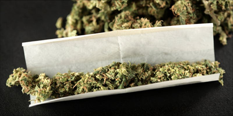 A Record Number 1 Major New Study Says Cannabis Reduces Risk Of Stroke