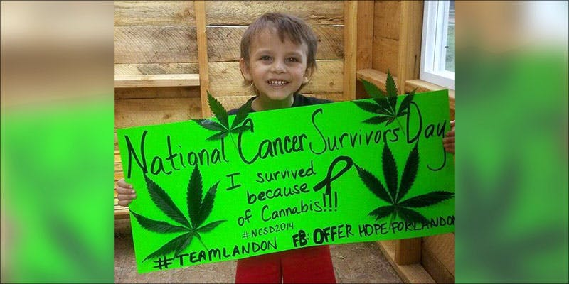 CANCER AND KIDS 1 Research Proves CBD has the Power to Destroy Leukemia Cells