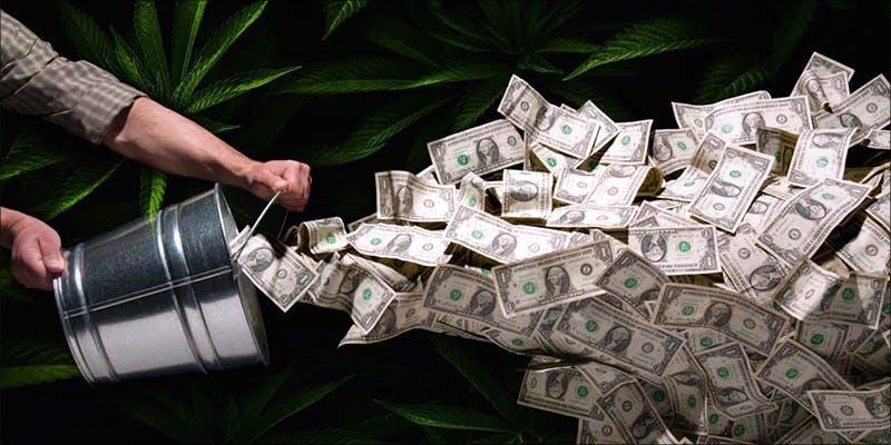 Cannabis Sales
