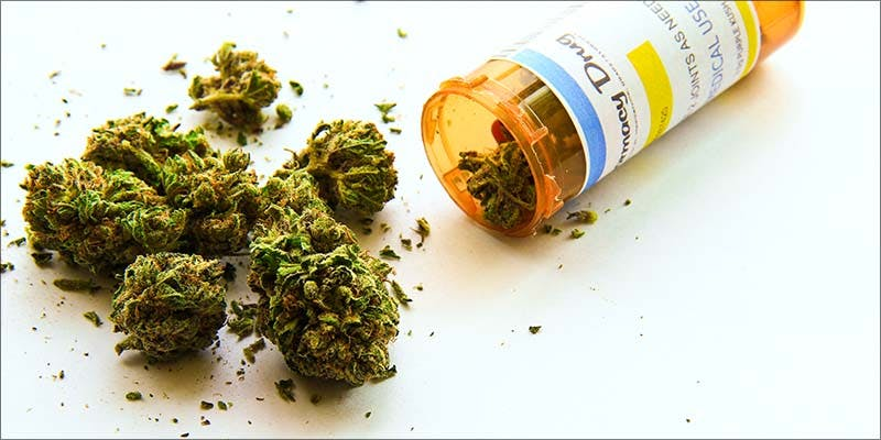 The European Market 1 Major New Study Says Cannabis Reduces Risk Of Stroke