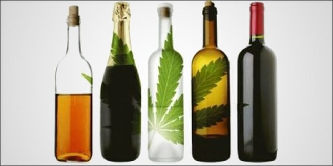 New Study Confirms The Real Gateway Drug Is Alcohol Not Weed