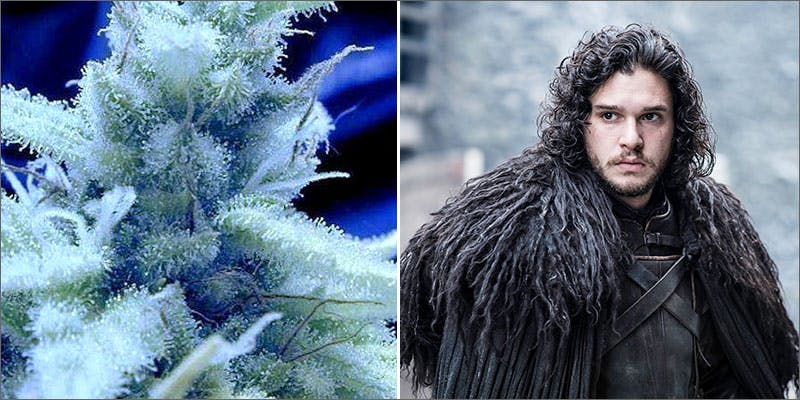 jonsnow How To Make Delicious Cannabis Infused Chocolate Crepes