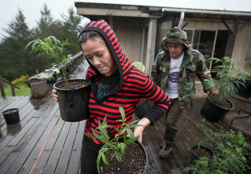 Abandoning The Emerald Triangle 5 of 5 These Bible Belt Christians Believe That Weed Is God's Perfect Medicine