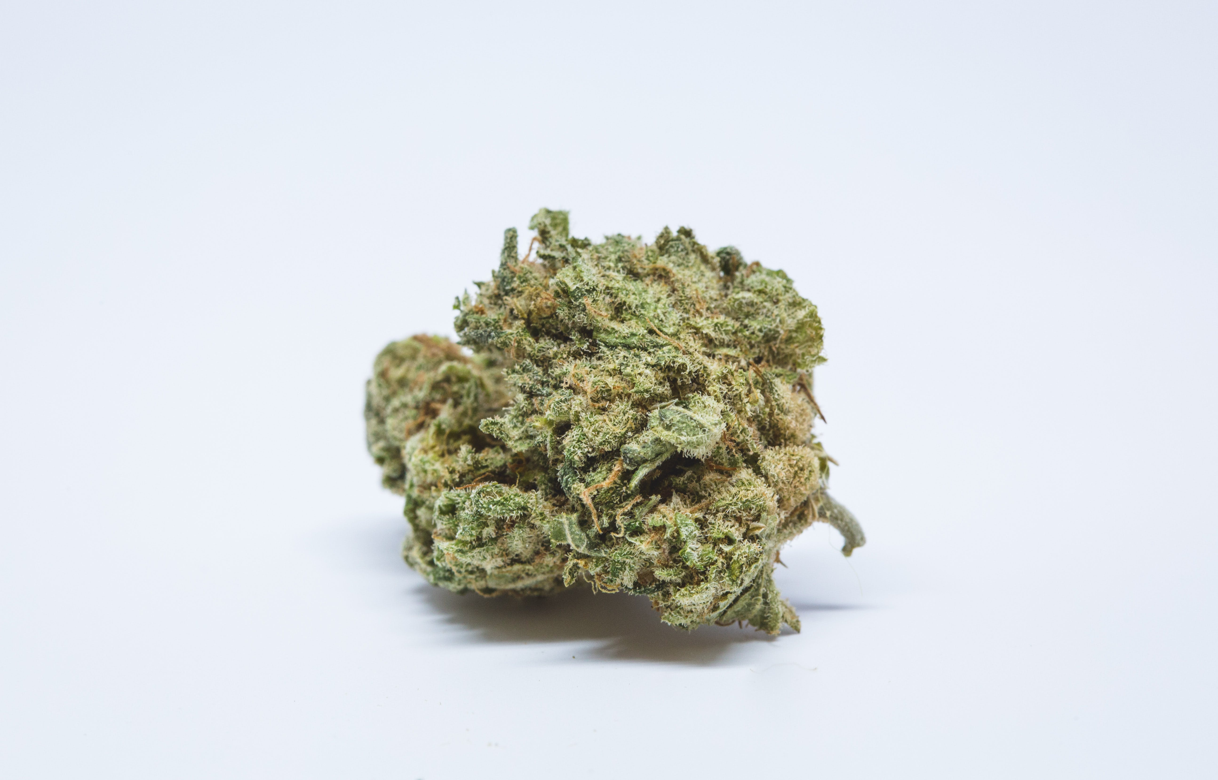 Allevi8 Sour Diesel 28 These Bible Belt Christians Believe That Weed Is God's Perfect Medicine