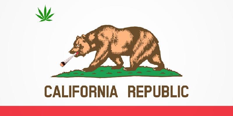 California Has Banned 1 Cannabis Oil Helped This Woman Beat Terminal Brain cancer