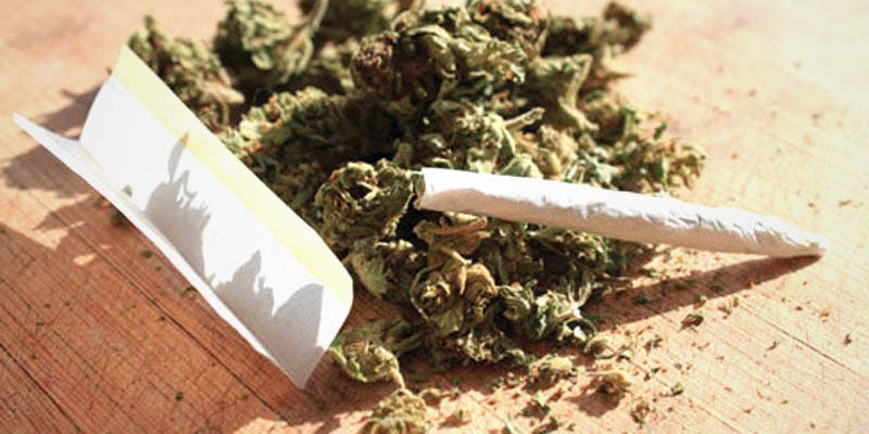 FBI Report Rise 1 These Bible Belt Christians Believe That Weed Is God's Perfect Medicine