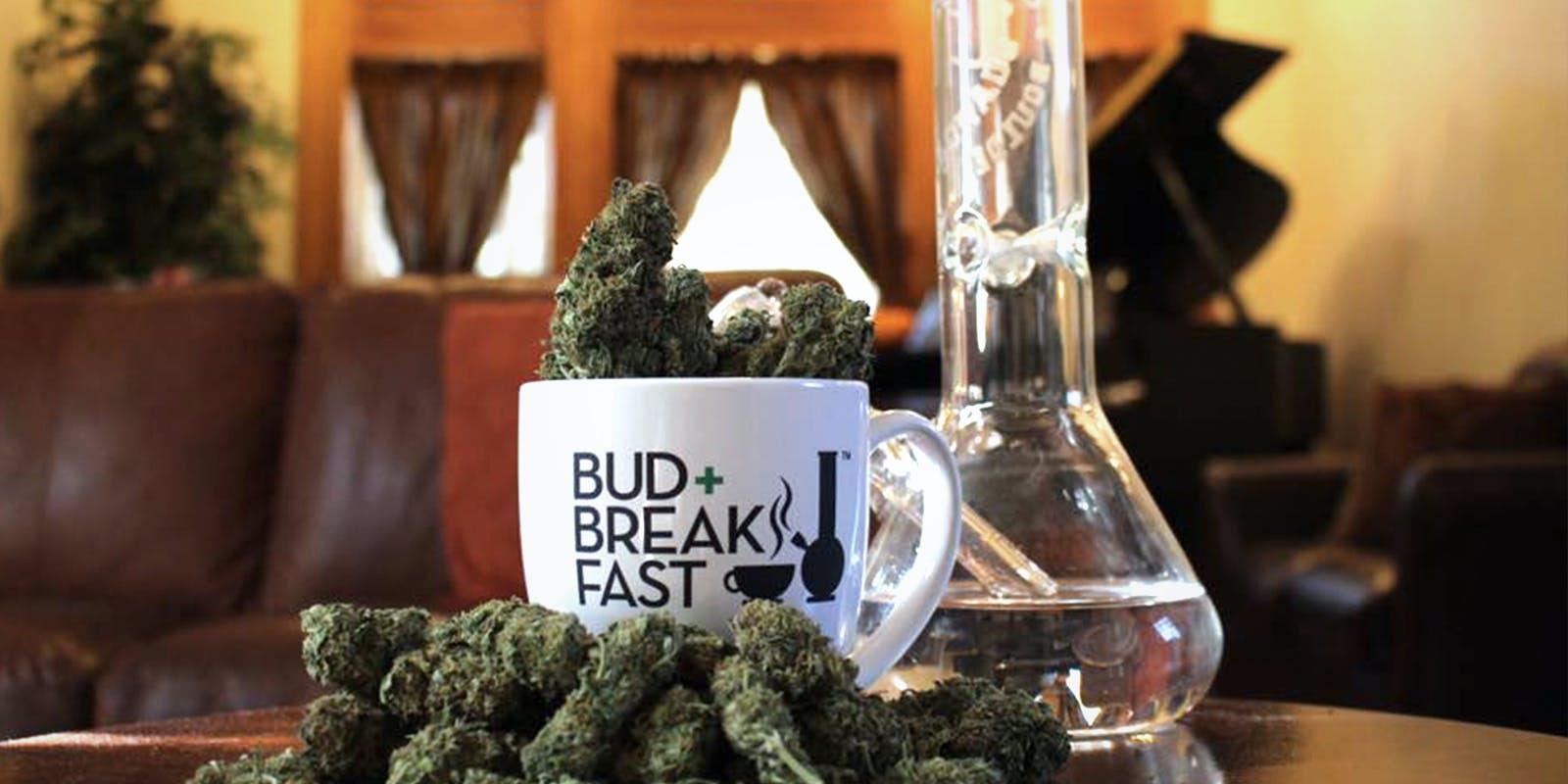 Bud and Breakfast Millionaire