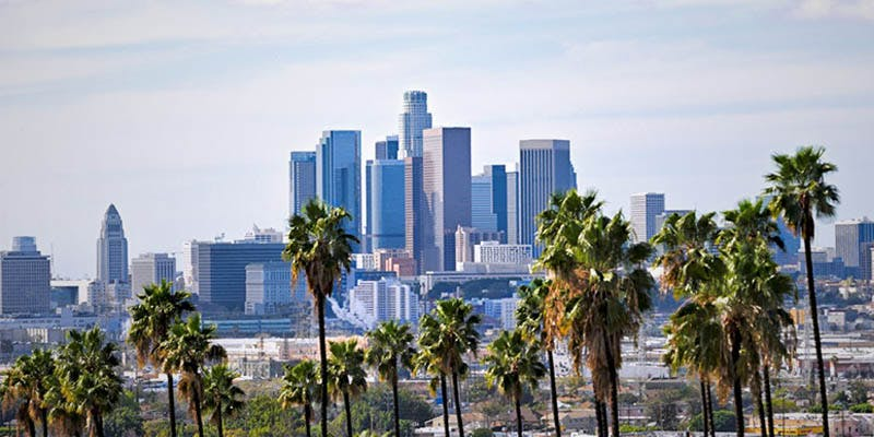 Los Angeles Could 1 Babies Need Cannabinoids To Grow Into Productive Citizens