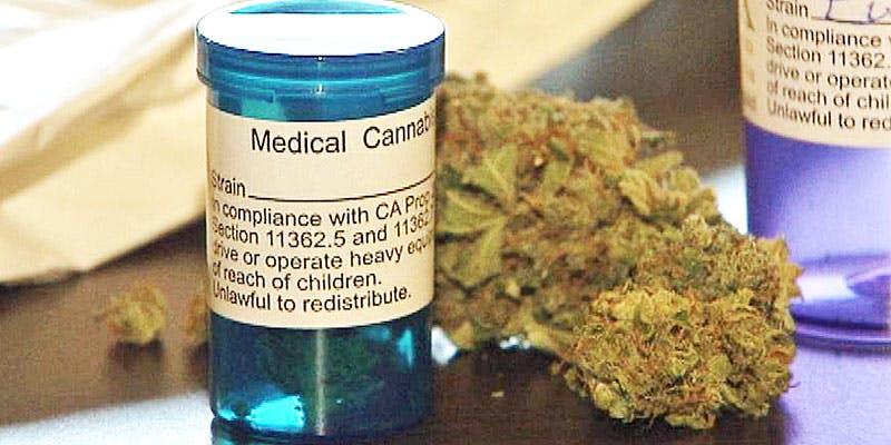 orrin3 Cannabis Oil Helped This Woman Beat Terminal Brain cancer