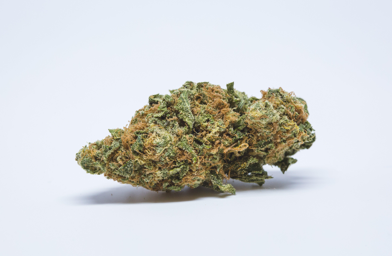 Pine Tar Kush Weed Strain; Pine Tar Kush Cannabis Strain; Pine Tar Kush Hybrid Marijuana Strain