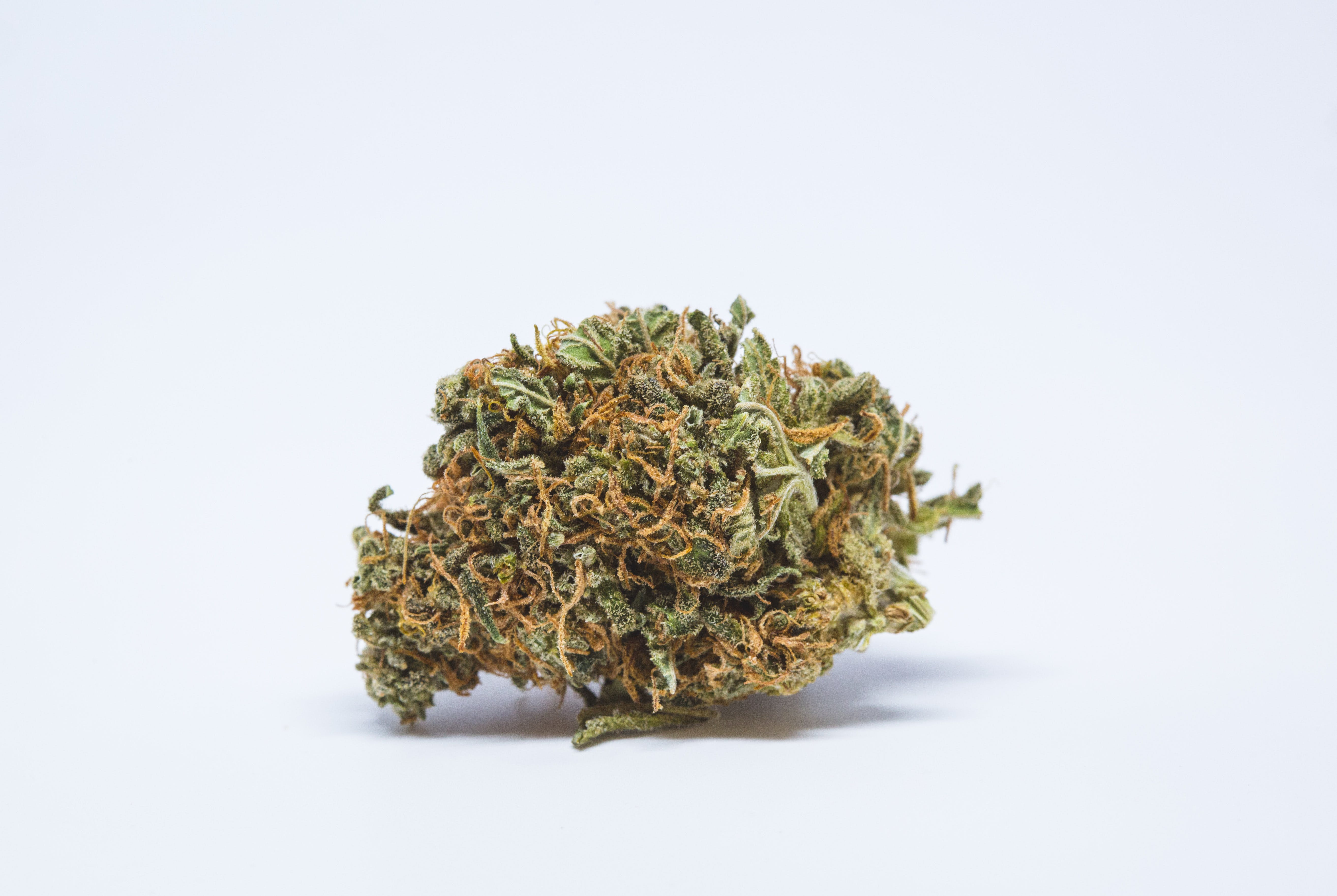 Willy's Wonder Weed; Willy's Wonder Cannabis Strain; Willy's Wonder Indica Marijuana Strain