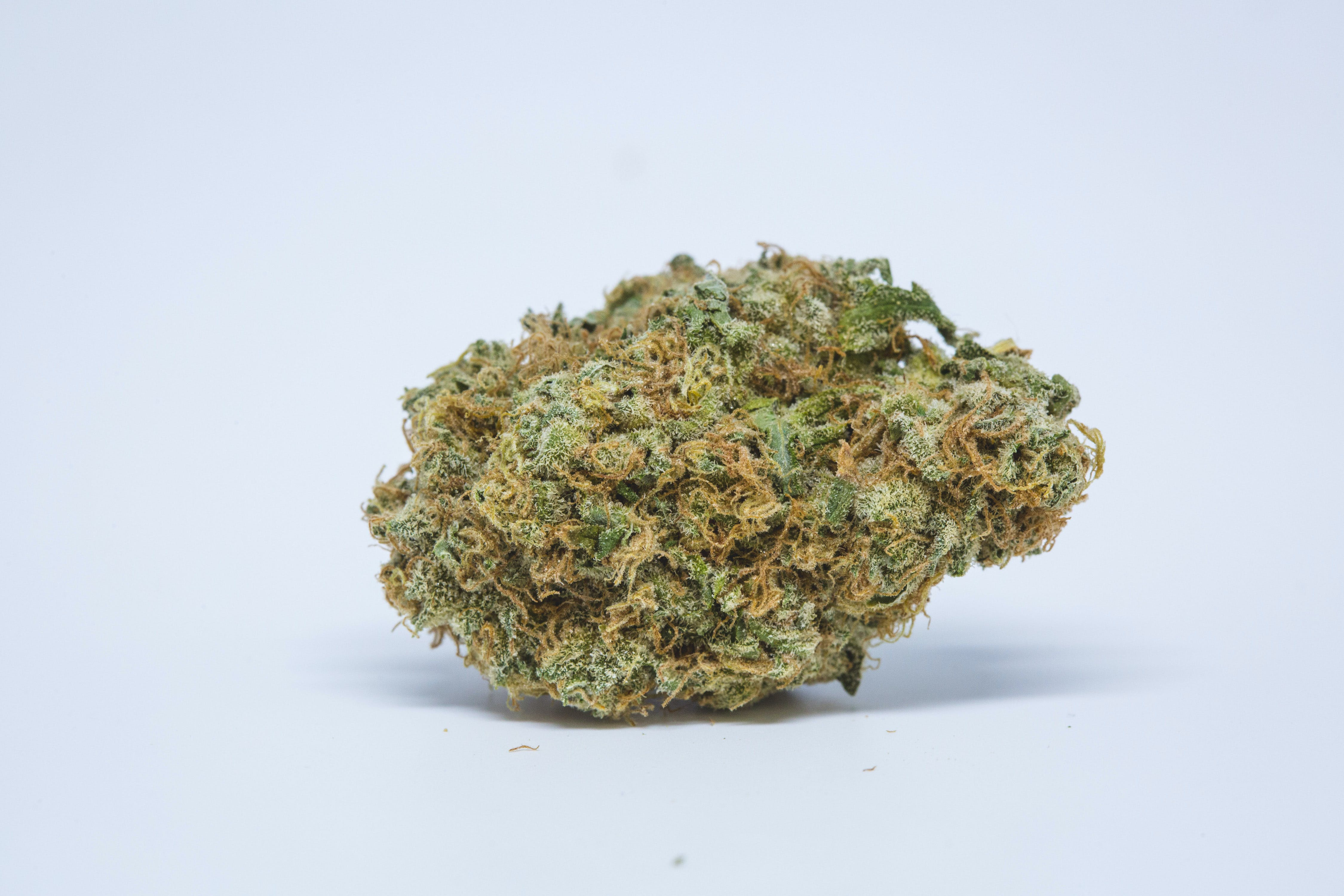Best Buds Critical OG 7 People Are Being Arrested For Driving High, Even Though Theyve Never Smoked Weed