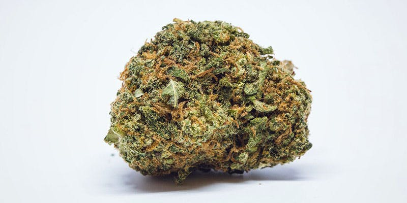 Cannatonic These Bible Belt Christians Believe That Weed Is God's Perfect Medicine