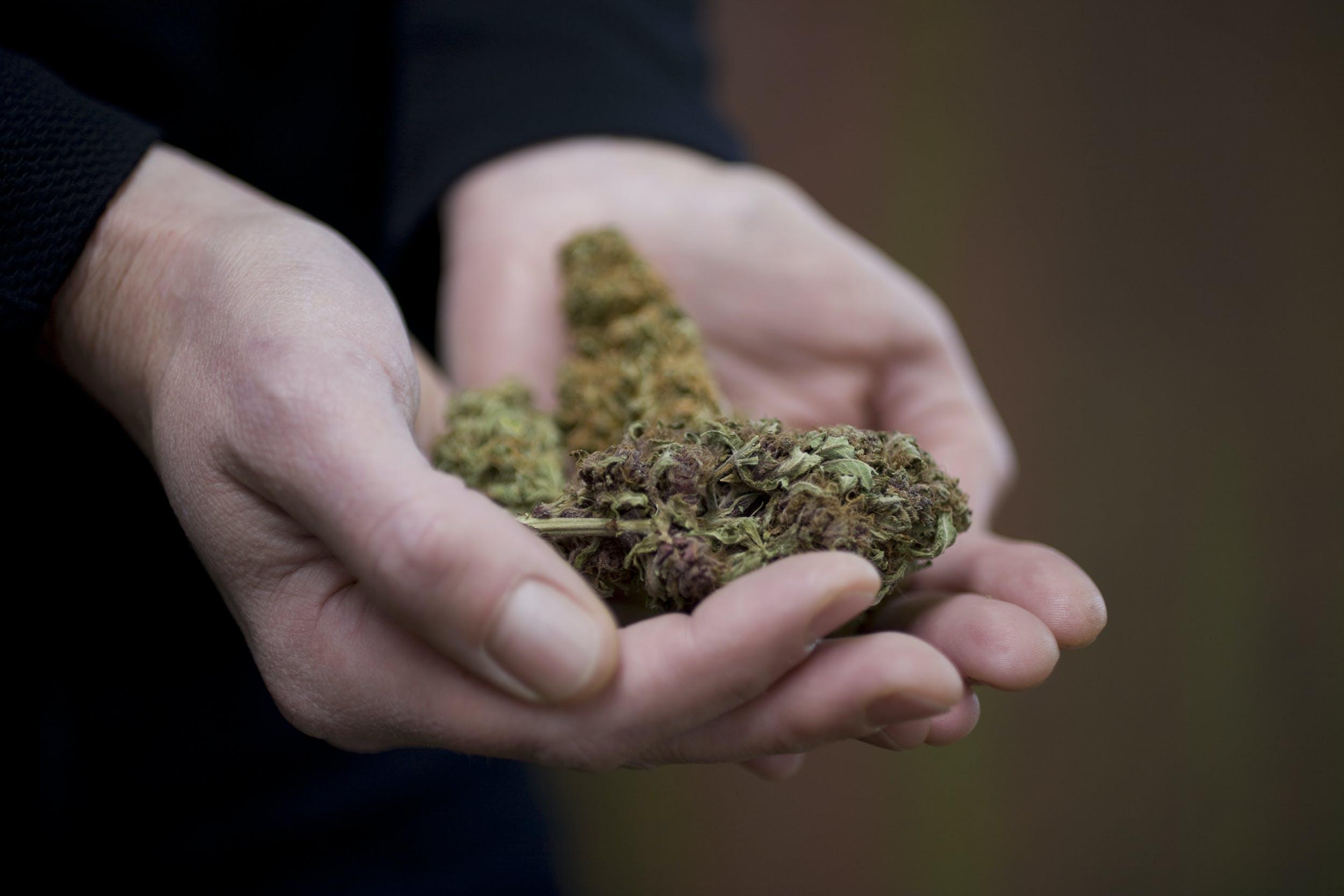 Cop Gives Guy Back Weed-Stash