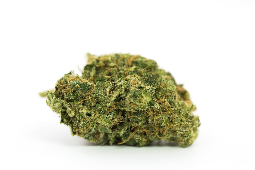 Love Potion #1 Weed; Love Potion #1 Cannabis Strain; Love Potion #1 Sativa Marijuana Strain