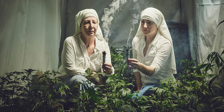 Small 1 of 17 To Save Her The Vision Of Her Child, This Mother Opened A Marijuana Grow Op In Brazil
