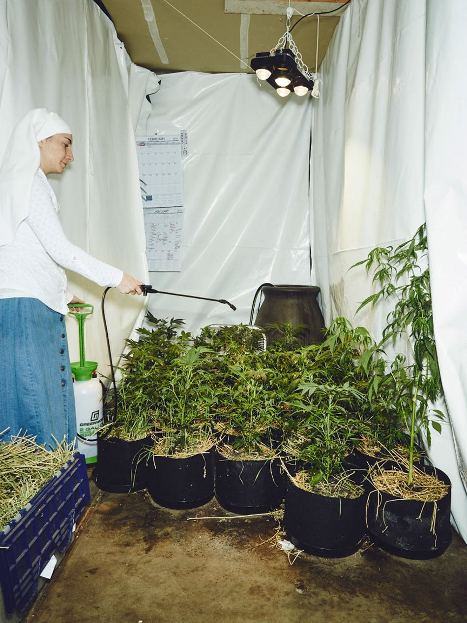 Small 16 of 17 To Save Her The Vision Of Her Child, This Mother Opened A Marijuana Grow Op In Brazil