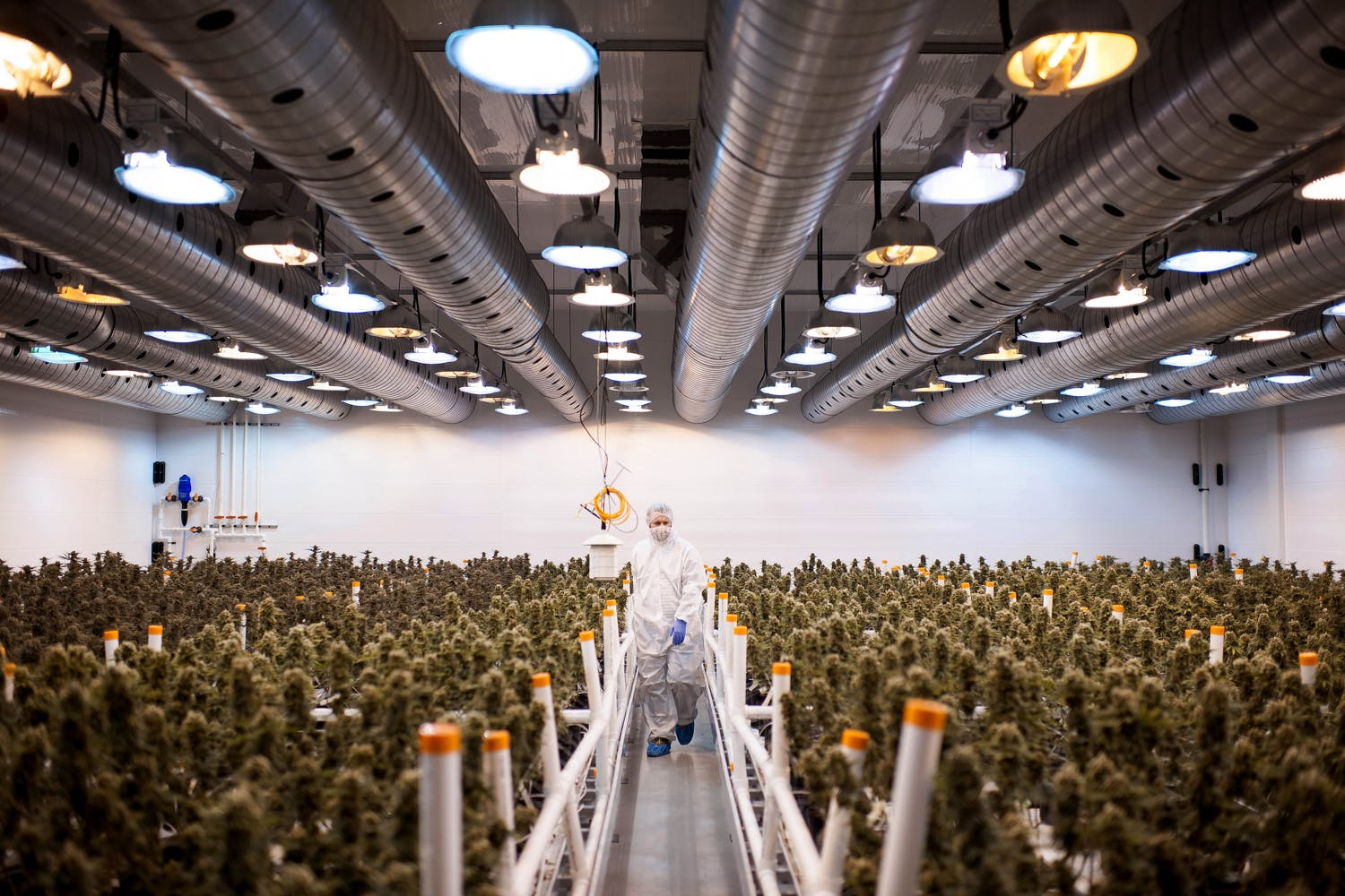 3 Best Marijuana Stocks to Invest in Right Now 3 of 4 The US Military is waving cannabis use and letting medical marijuana patients serve