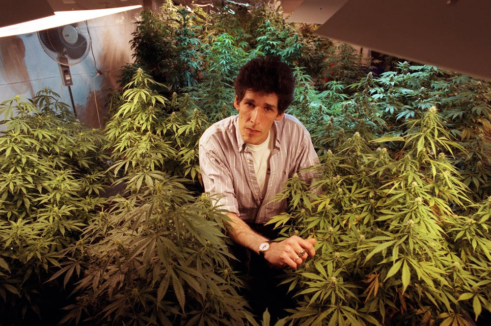 BlackMarket Californias High Taxes on Legal Weed Could Fuel a Black Market Return