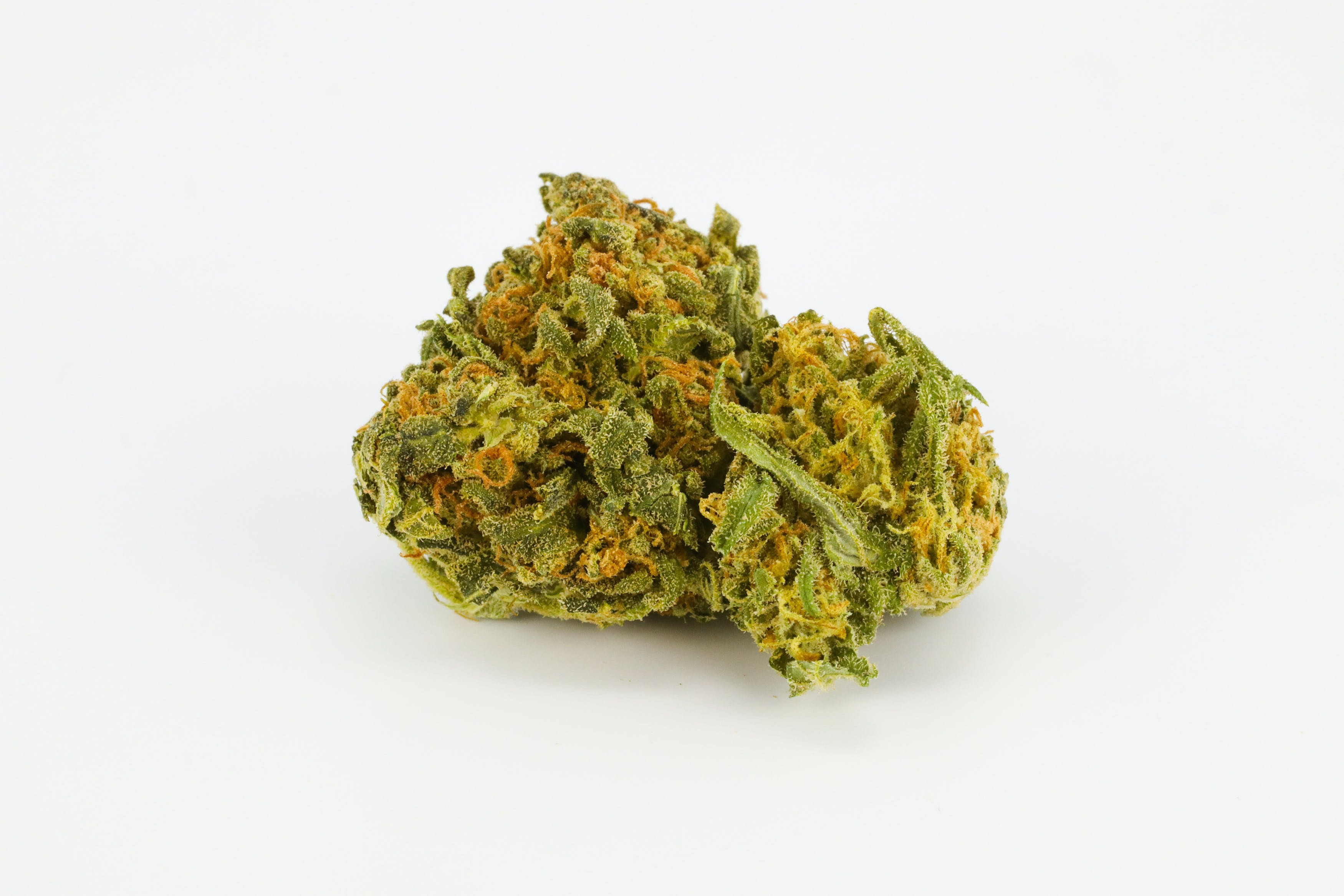 Phantom Cookies Weed; Phantom Cookies Cannabis Strain; Phantom Cookies Hybrid Marijuana Strain
