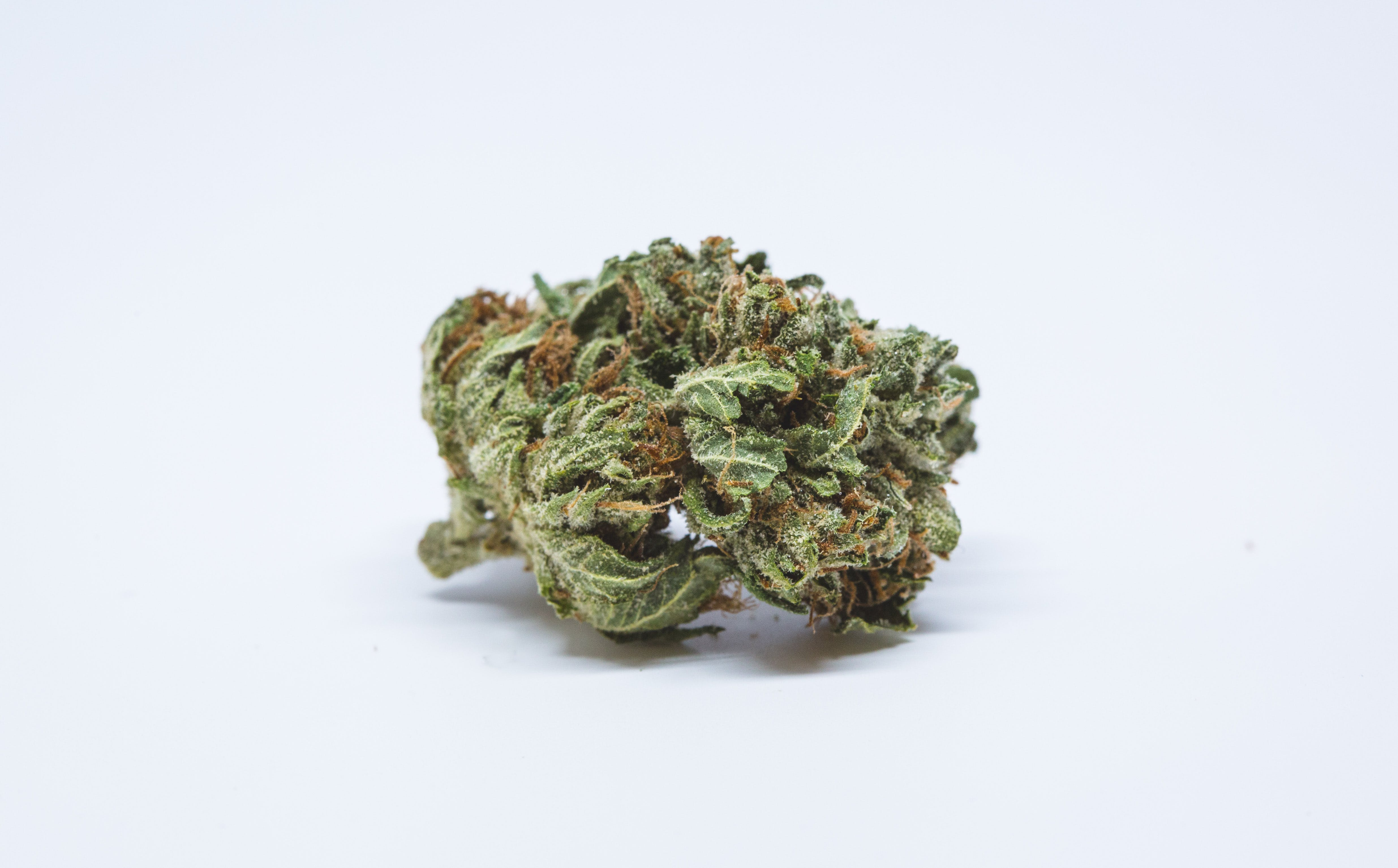Allevi8 Master Kush 5 The US Military is waving cannabis use and letting medical marijuana patients serve
