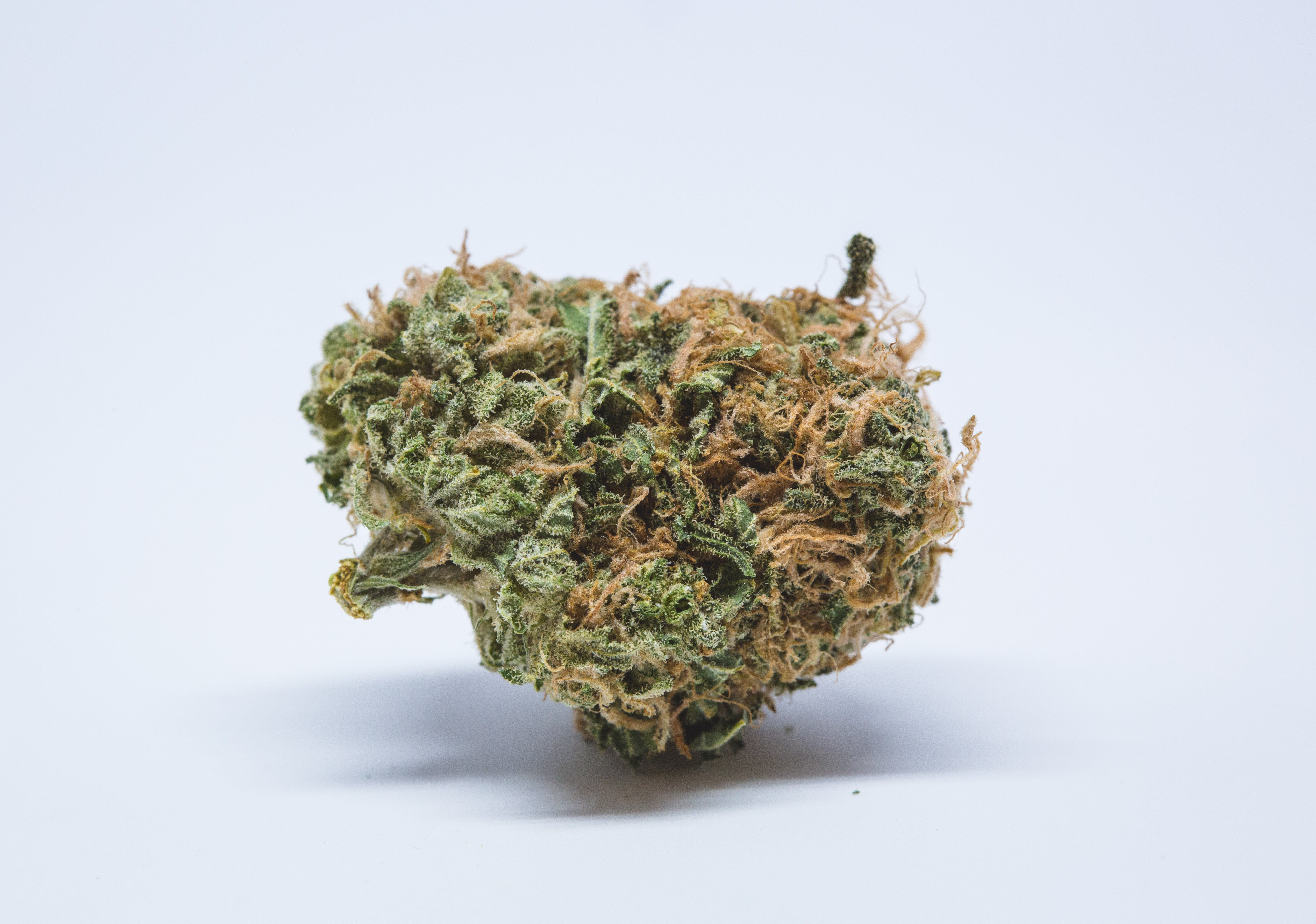 Banana OG Weed; Banana Og Cannabis Strain; Banana OG Hybrid Marijuana Strain