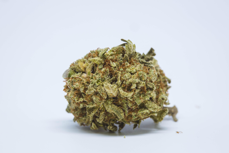 Medicine Man Weed; Medicine Man Cannabis Strain; Medicine Man Hybrid Marijuana Strain