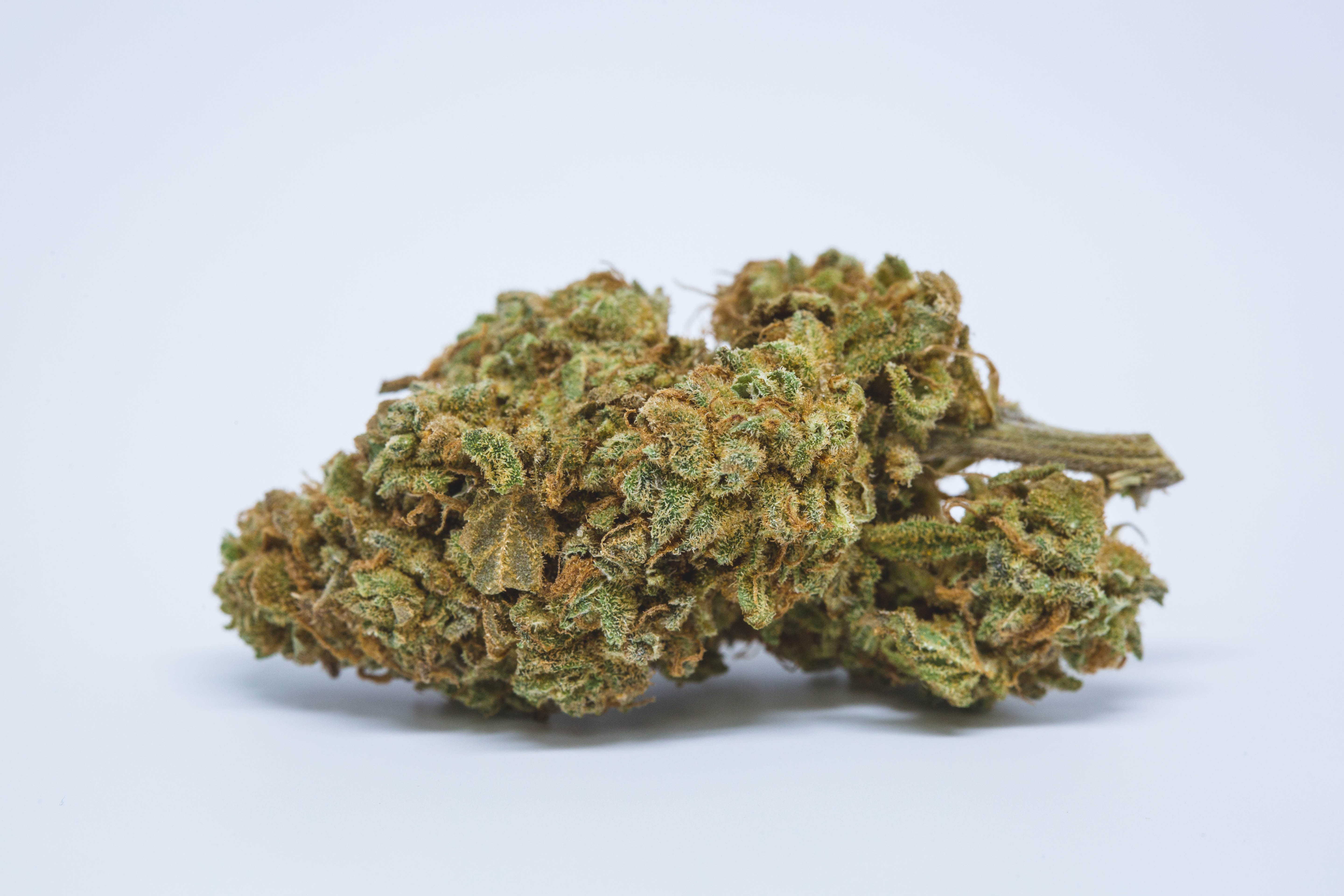 Mean Green Weed; Mean Green Cannabis Strain; Mean Green Hybrid Marijuana Strain