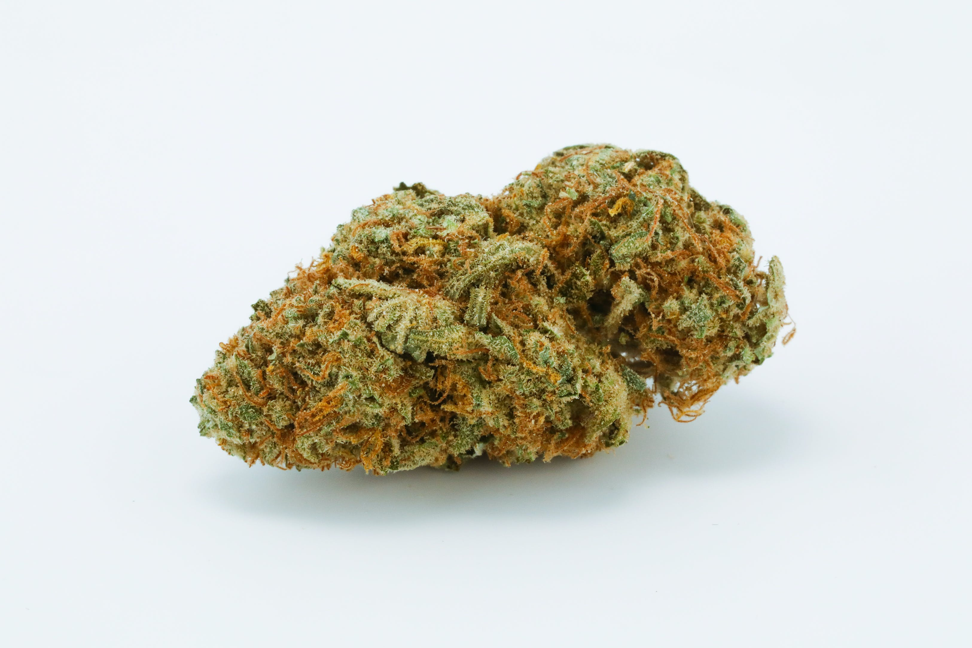 White Queen Weed; White Queen Cannabis Strain; White Queen Hybrid Marijuana Strain
