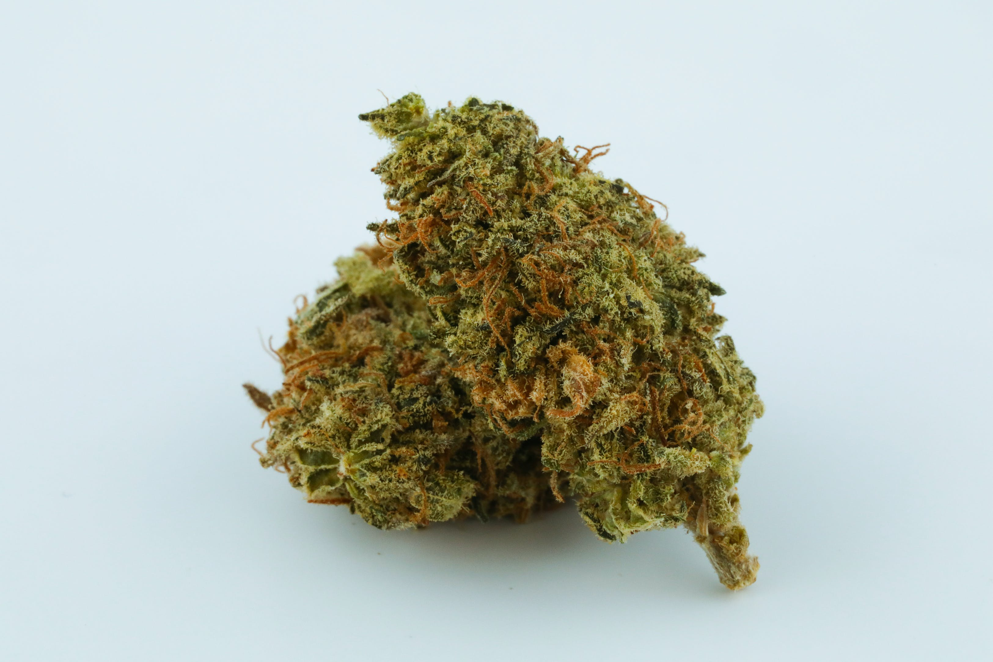 Black Widow Weed; Black Widow Cannabis Strain; Black Widow Hybrid Marijuana Strain