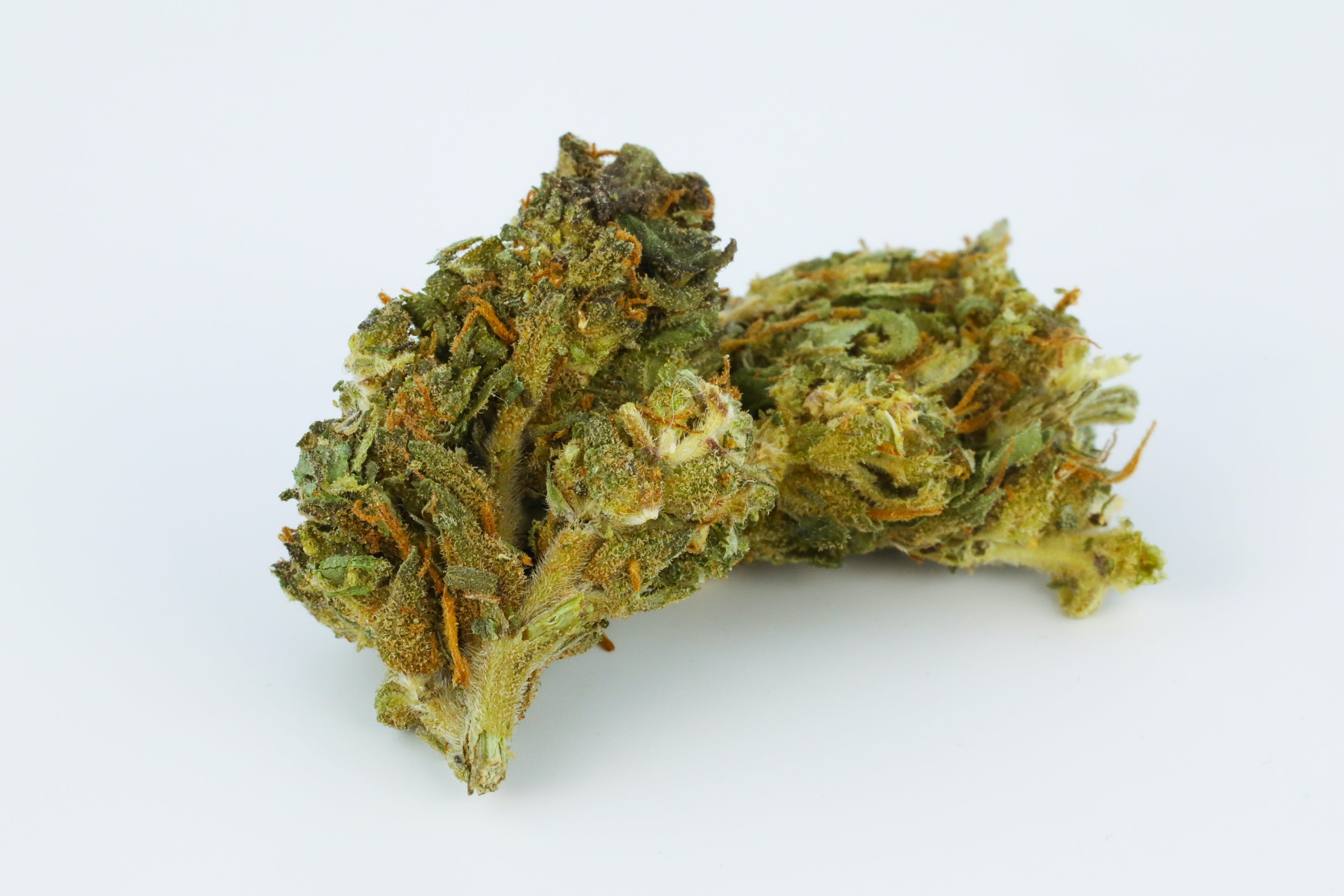 Haley's Comet Weed; Haley's Comet Cannabis Strain; Haley's Comet Hybrid Marijuana Strain