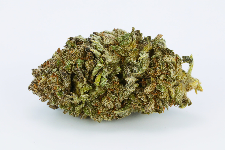 Blue Viper Weed; Blue Viper Cannabis Strain' Blue Viper Hybrid Marijuana Strain