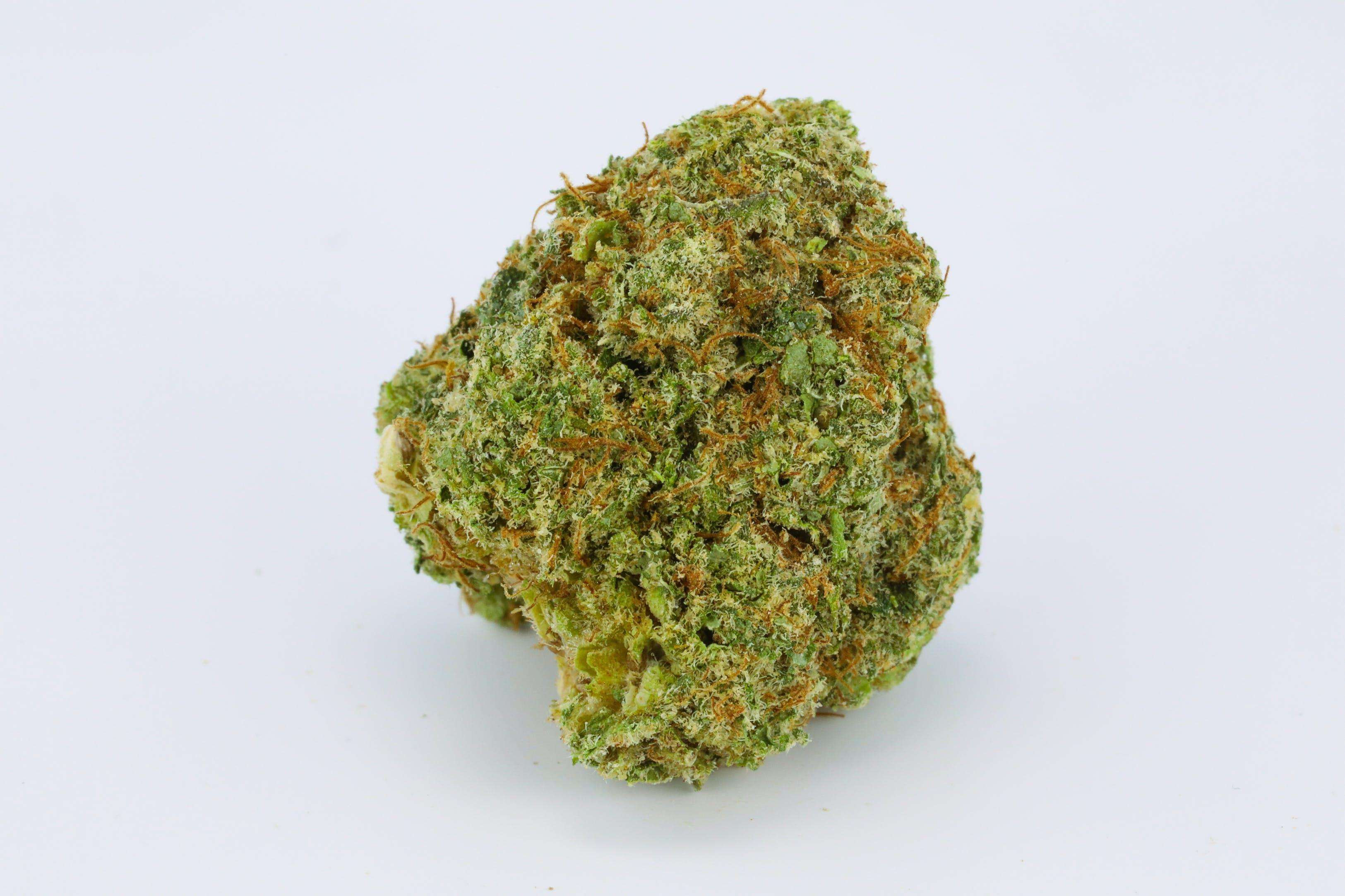 Hempstar Weed; Hempstar Cannabis Strain; Hempstar Hybrid Marijuana Strain