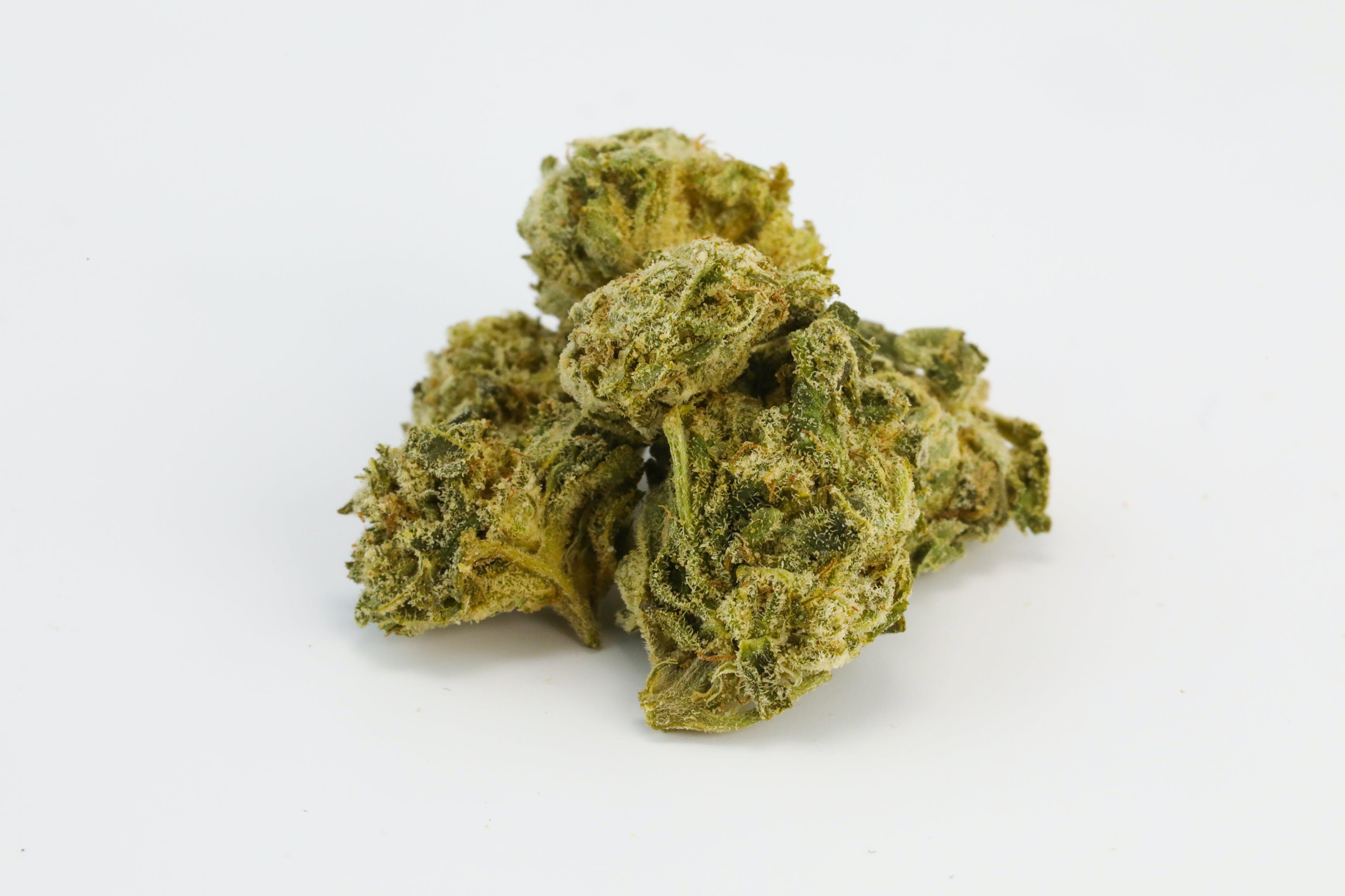 Blue Dog Weed; Blue God Cannabis Strain; Blue God Indica Marijuana Strain