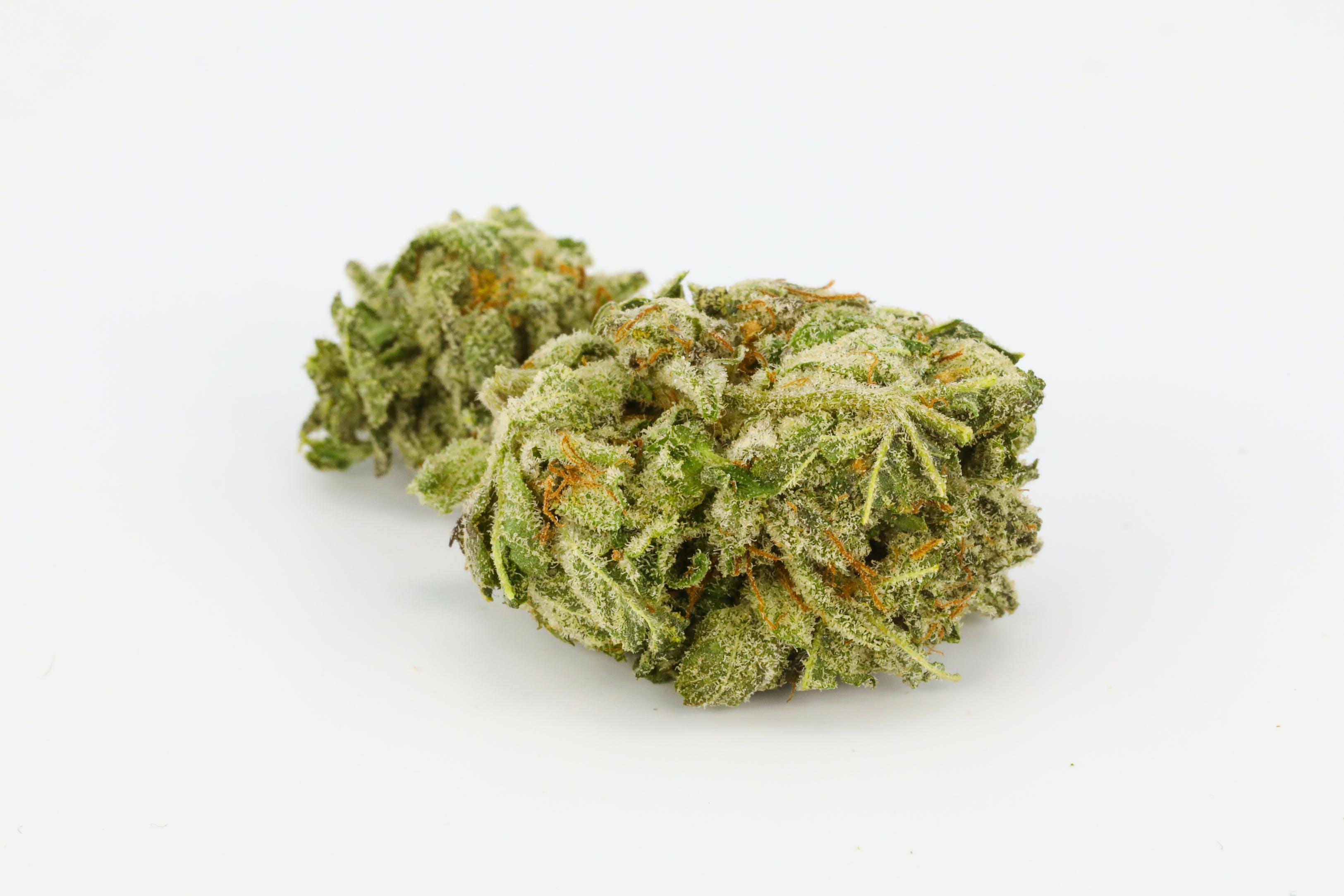 Purple Hindu Kush Weed; Purple Hindu Kush Cannabis Strain; Purple Hindu Kush Indica Marijuana Strain