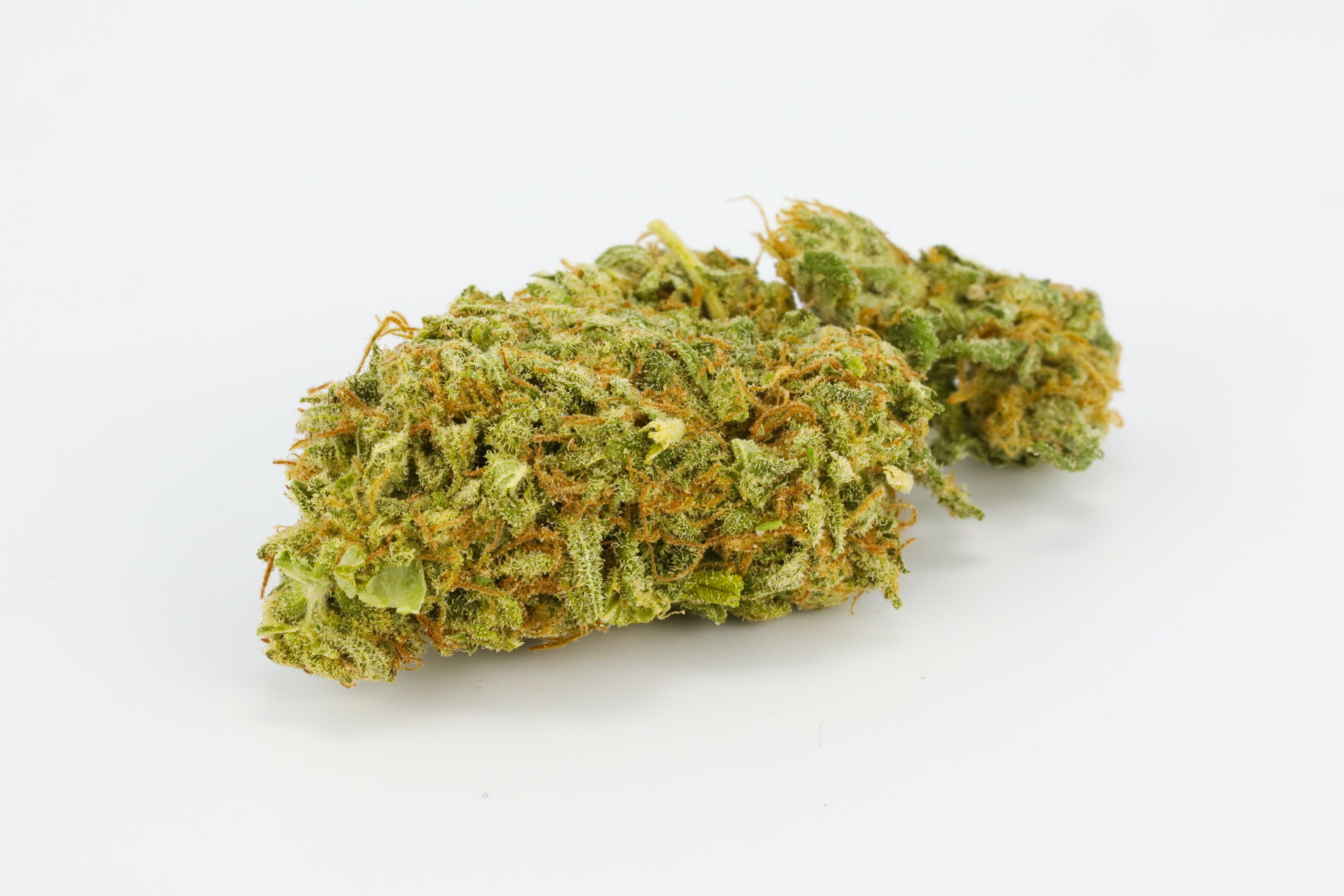 Enigma Weed; Enigma Cannabis Strain; Enigma Indica Marijuana Strain