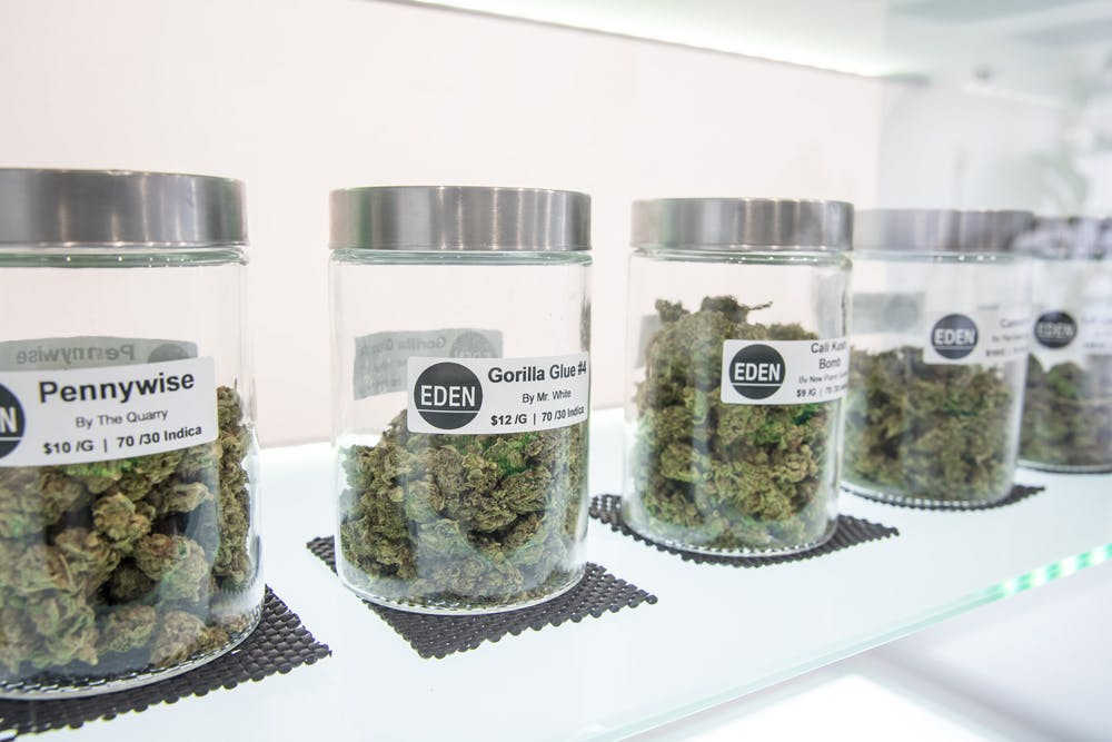 HERBEDENSTRAINS Why California is important for ending marijuana prohibition in the U.S.