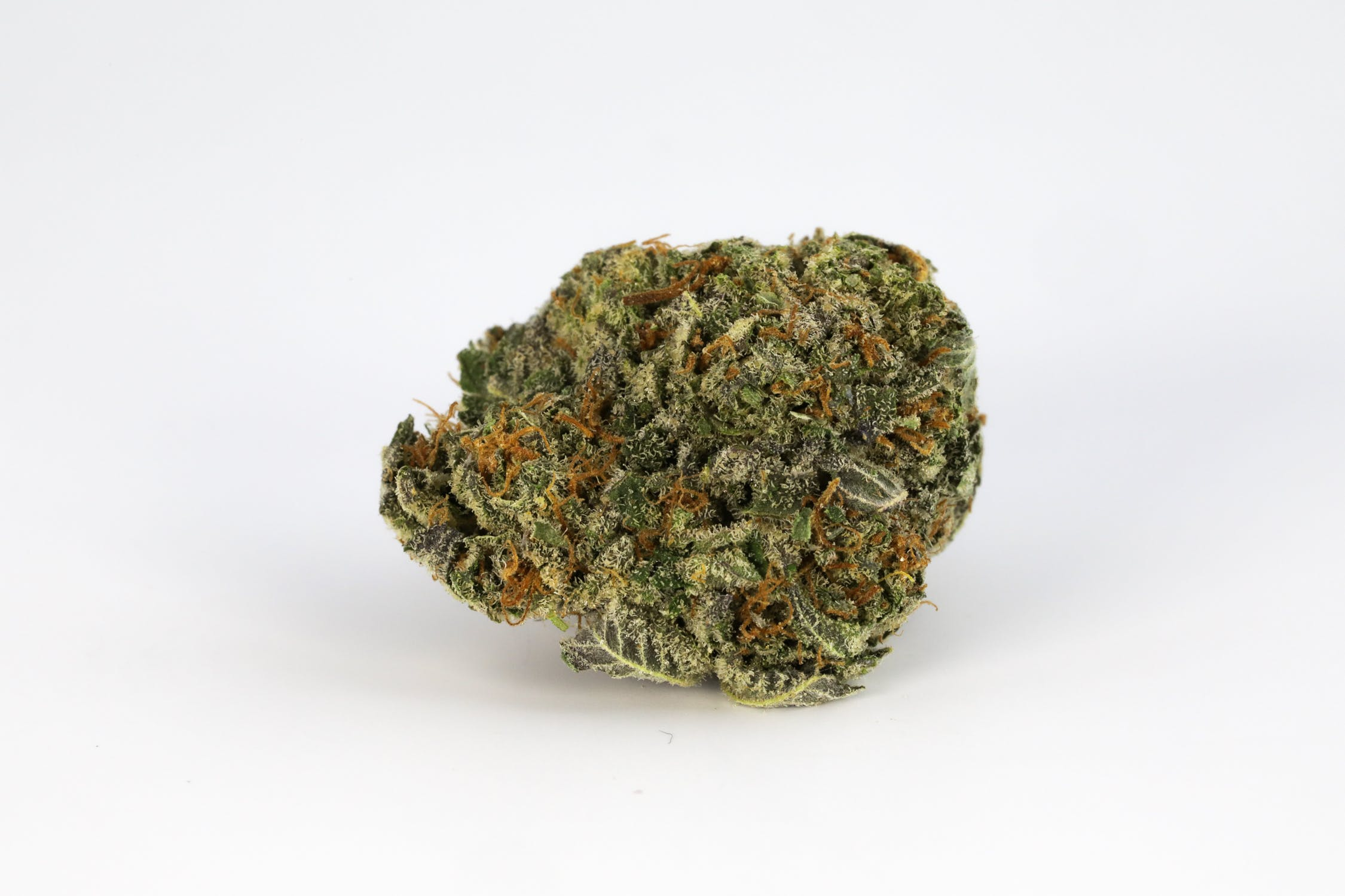 Burmese Kush Weed; Burmese Kush Cannabis Strain; Burmese Kush Hybrid Marijuana Strain