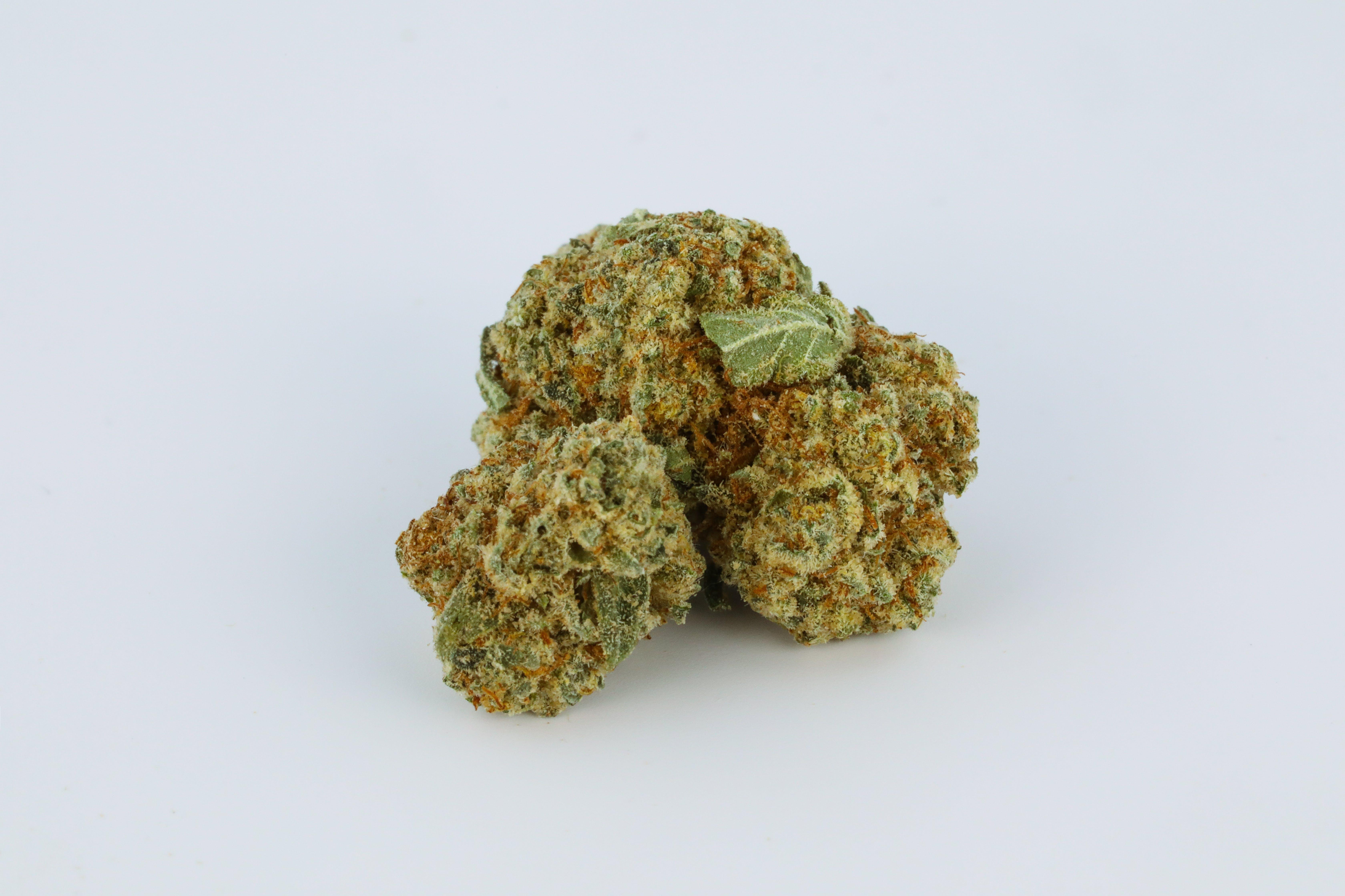 Champagne Kush Weed; Champagne Kush Cannabis Strain; Champagne Kush Hybrid Marijuana Strain