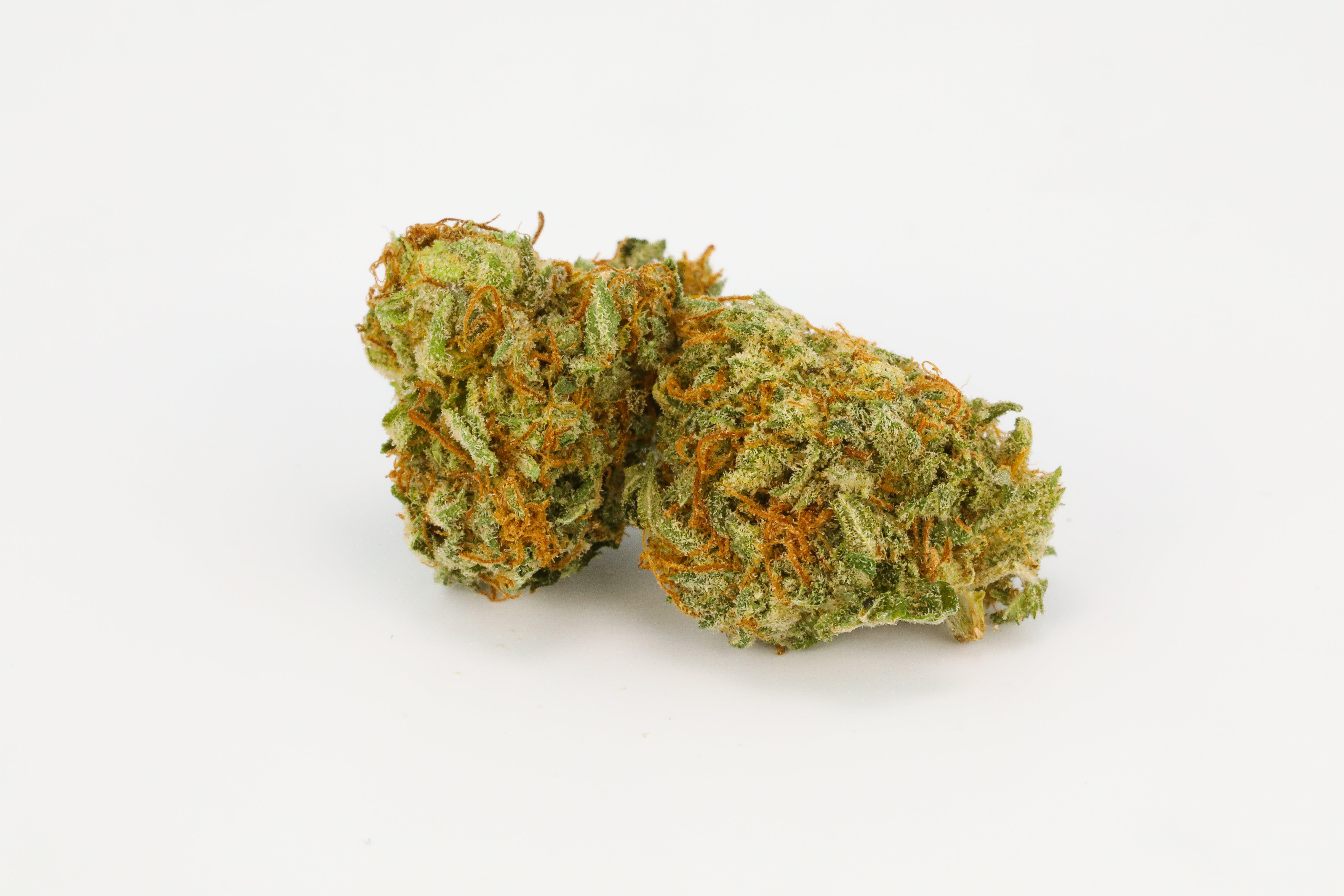 Master Og Weed; Master OG Cannabis Strain; Master OG Indica Marijuana Strain