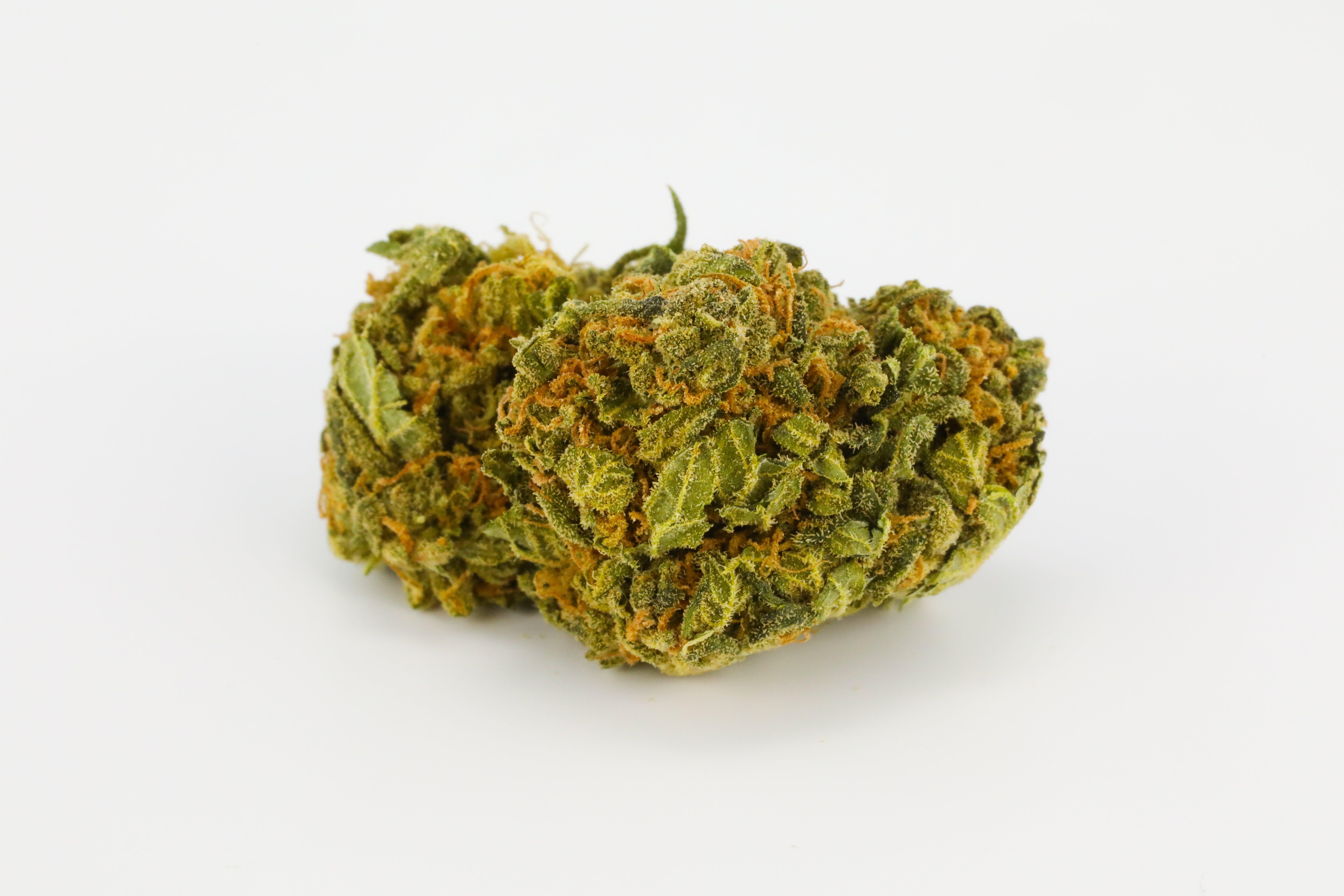 Mazar I Sharif Weed; Mazar I Sharif Cannabis Strain; Mazar I Sharif Indica Marijuana Strain