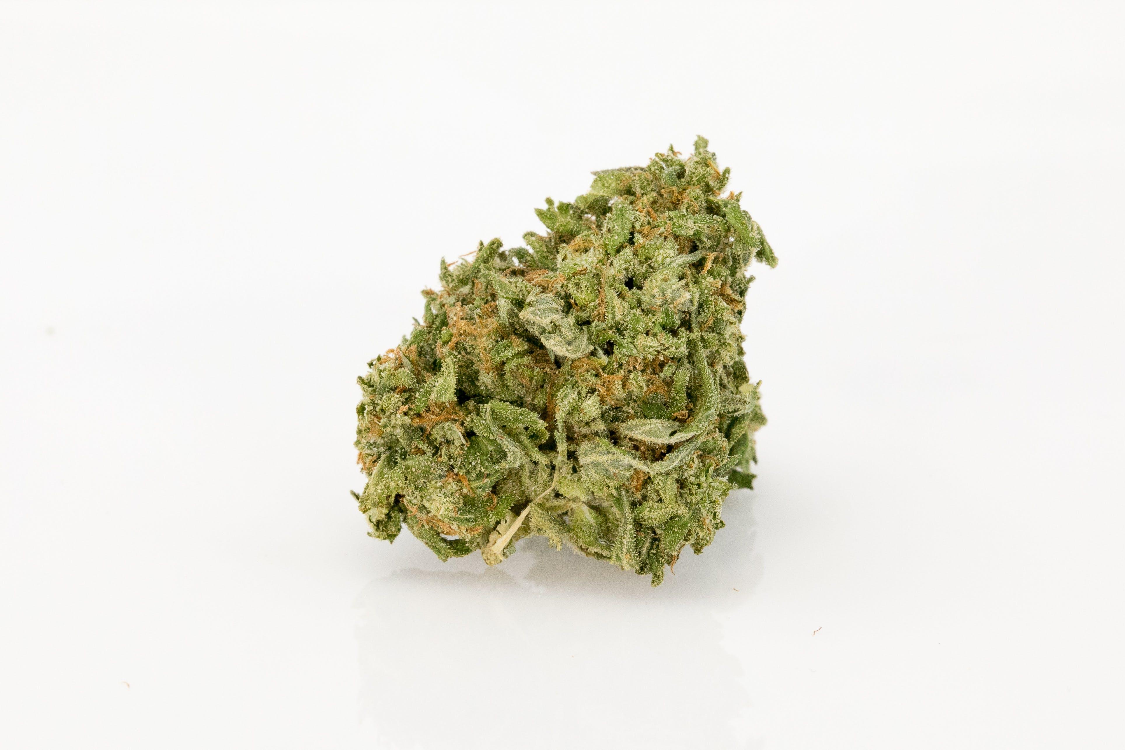 Mother of Berries Weed; Mother of Berries Cannabis Strain; Mother of Berries Indica Marijuana Strain