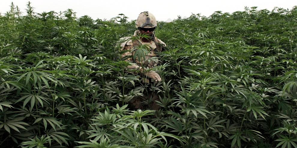 """Canadian Soldiers To Be Given """"Weed Goggles"""" To Learn What It's Like To Be High"""